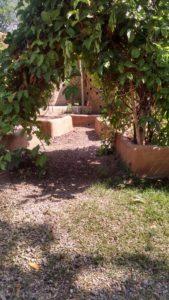 jargin garden
